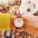 DW watch.jpg