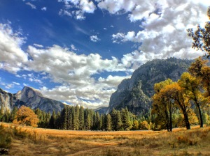 Sentinel Meadow & Cook's Meadow Loop Yosemite