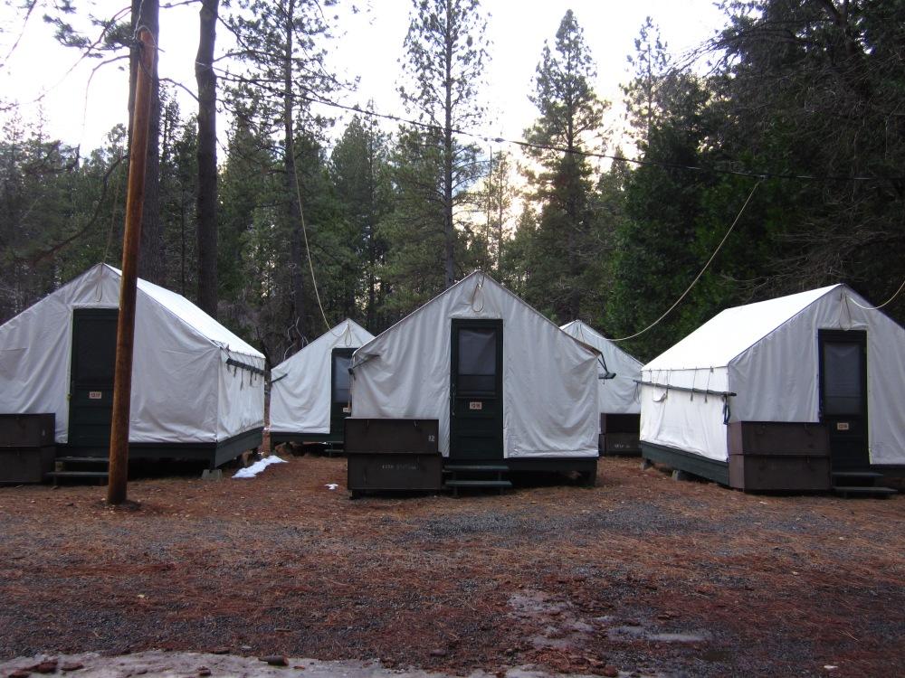 Half Dome Village / Curry Village Yosemite