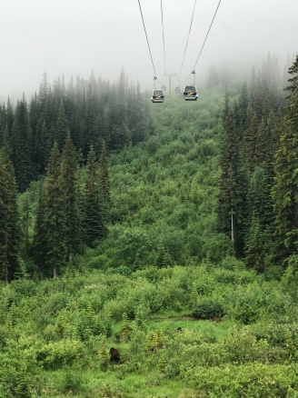Kicking Horse Mountain Resort- Grizzly Bear Boo