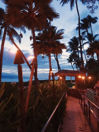 Maui Baby Travel Guide Hyatt Luau