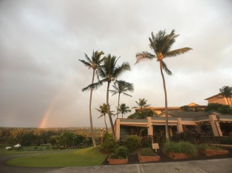 Ritz-Carlton Banyan Tree Rainbow Maui