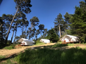Mendocino Grove Glamping