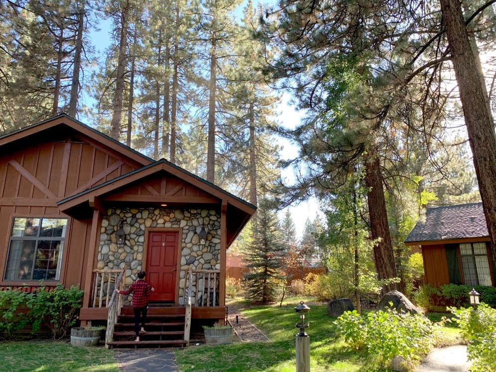 black bear lodge south lake tahoe cabin