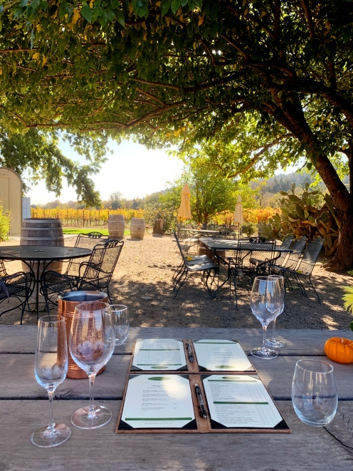 amista vineyards wine road healdsburg